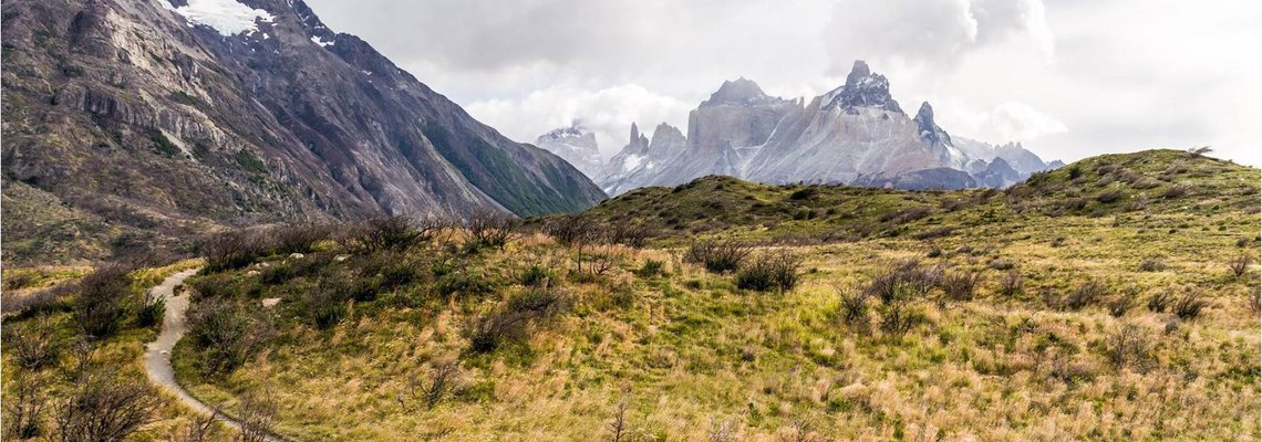 Road trip into Chilecon valley: discover the tech ecosystem landscape of Chile!