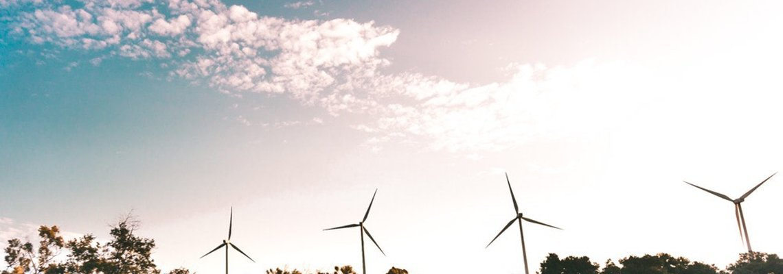 The Rise and Future of the Cleantech Industry