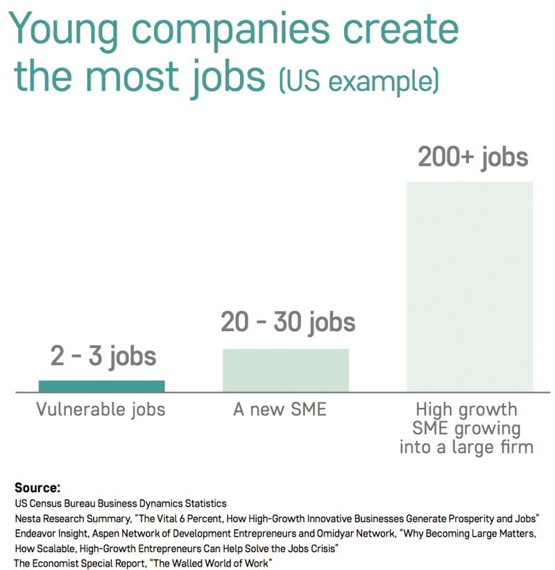 Young companies